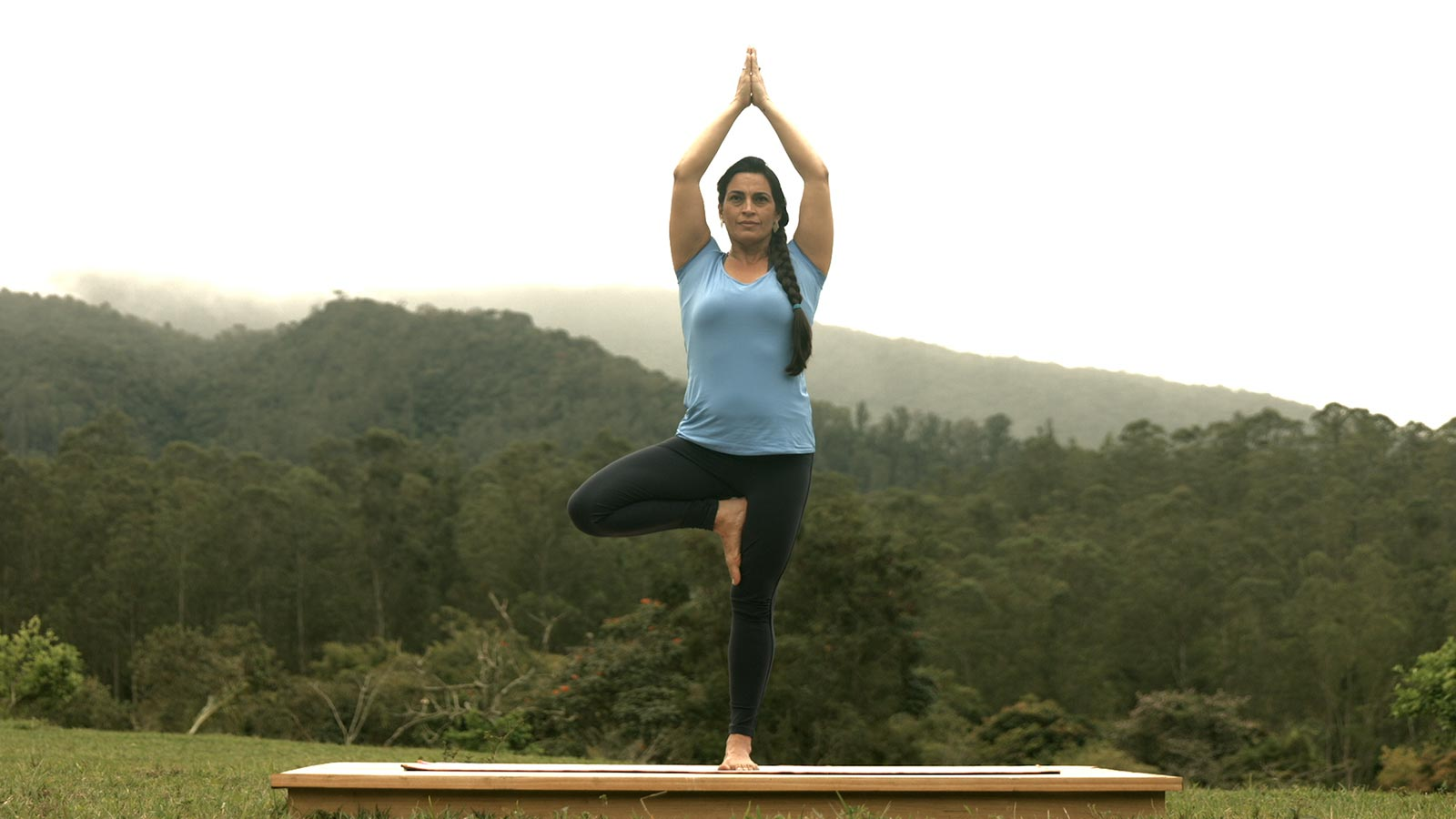 Image result for वृक्षासन (Vrikshasana)